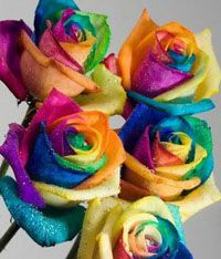 33 exquisite rose pictures you 39 ll fall in love with rose for Order tie dye roses online