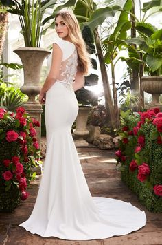View Statement Back Wedding Dress - Style from Mikaella Bridal. Crêpe gown with boat neckline and cap sleeves. Guipure Lace appliqués on illusion back and front cut outs. Crêpe belt at waist. Fit and flare Crêpe skirt with inverted seam at back of train. Bridal Wedding Dresses, Wedding Dress Styles, Lace Wedding, Dream Wedding, Mikaella Bridal, Gowns Of Elegance, Bridal Boutique, The Dress, Dress Collection