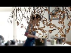"Anne Mette Hjortshøj ""Paying Honest Attention"" - beautiful film about Danish potter - YouTube"