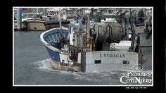 Reportage vidéo sur la pêcherie de la Cotinière #Cotiniere #Pecherie