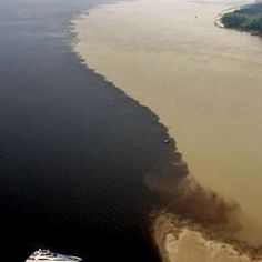 """The """"Meeting of the Waters"""" is the point at which the Rio Negro meets the Rio Solimões to form the Amazon River proper in the Brazilian state of Amazonas. Due to differences in temperature, speed and density, the two rivers' differently colored waters don't mix immediately, but flow side by side for several miles."""