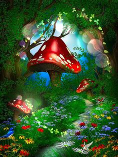 Edited woodland fairy picture.