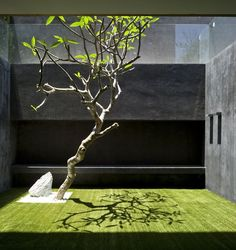 Detail Collective | Outside Spaces | No-Grass Gardens | Image/Design:Pitsou KedemArchitects