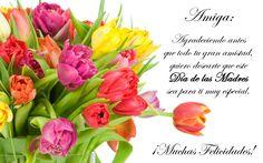 Mensaje A Las Madres | ... Gratis .Com: ¡Feliz Día de las Madres! (Mensaje para una amiga