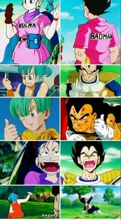 Dragon Ball Z - Vegeta & Bulma (perfect for each other lmao)