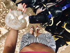 Tap Shoes, Dance Shoes, Birkenstock Boston Clog, Clogs, Instagram, Fashion, Dancing Shoes, Clog Sandals, Moda