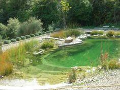 Sans chimie, sans clore, sans beaucoup des travaux de nettoyages: C'est cela piscine naturelle