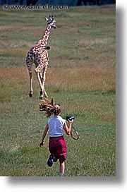 """Most of us wouldn't chase down a giraffe to take its picture, but we might want to chase down the """"how-to"""" of starting a photography business.  Photographer, Dan Heller offers tips and sells books on just how to do that.    http://www.danheller.com/photo-inc.html"""