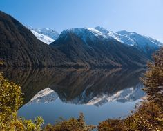 Reflecting in Fiordland by deftgaze  on 500px