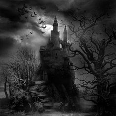 Castle in dark