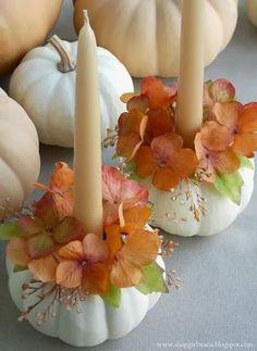pumpkins - offset to one side; plain foreground  Photo | The Little Corner | Bloglovin