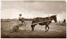 """""""Eight-year old Jack driving horse rake. A small boy has difficulty keeping his seat on rough ground and this work is more or less dangerous."""" August 1915, western Massachusetts. Photograph by Lewis Wickes Hine."""