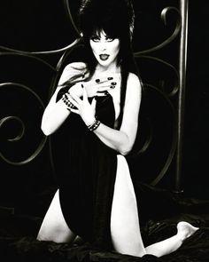 The FacesDieses Bild wurde verkleinert. Klick hier, um es im Original anzuzeigen. Dark Beauty, Gothic Beauty, Elvira Movies, Beautiful Celebrities, Beautiful Women, Kim Wilde, 4 Image, Cassandra Peterson, Dark Pictures