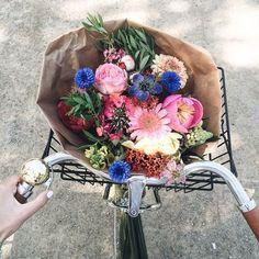 no rain, no flowers ❁ // May Flowers, Fresh Flowers, Beautiful Flowers, Floral Flowers, Spring Flowers, Deco Floral, Arte Floral, Plants Are Friends, No Rain
