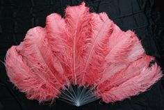 Burlesque feather fans because I love the latest Dance Moms!!!!!!!!