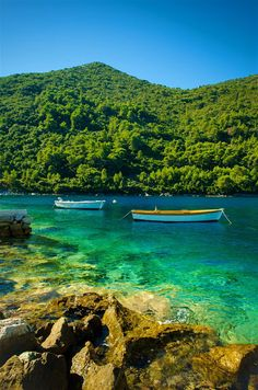 The idyllic waters and forests of the Mljet National Park