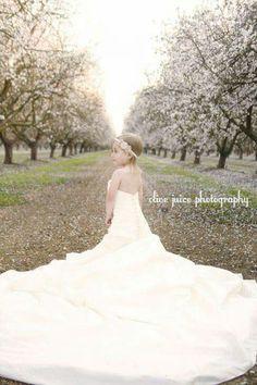 My wedding dress + Viola