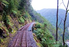 West Coast Wilderness Railway Double Decker Bus, My Dream Came True, Rock Pools, Beautiful Places To Visit, Tasmania, Study Abroad, North West, West Coast, Wilderness
