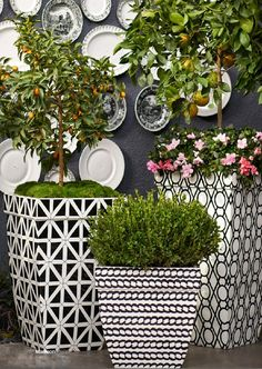For the chicest of the chic looks for your outdoor living areas, try a dramatic black and white color scheme.