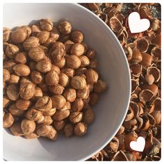 Add these delicious nuts into cakes or chocolate for a healthy, crunchy boost! Healthy Alternatives, Dog Food Recipes, Beans, Organic, Snacks, Cakes, Chocolate, Baking, Vegetables