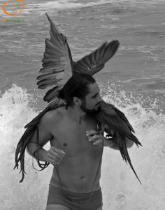 http://www.beanimal.com.br/index.php/2013/03/30/book-beanimal-by-igor-igarashi/  Enjoy your life and your friends. Aproveite a vida e os amigos. #Arara #Arasoftheworld #Macaw #Beach #Praia #EducaçãoAmbiental #EnvironmentalEducation #BEAnimal #BemEstarAnimal #animalwelfare