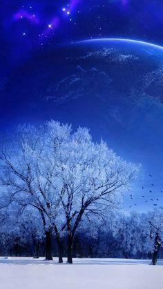 720x1280 Обои природа, пейзаж, зима, небо, снег, полнолуние, деревья, птицы, вечер