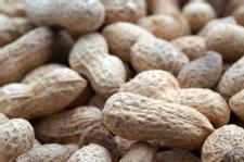 Food Allergies: Growing in Numbers and Understanding