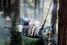 Sleepy in the rainforest