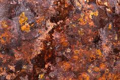 Word of the day: ferruginous adj. Resembling iron rust in colour; reddish brown. Image: Rust on iron by Laitr Keiows. CC-BY-SA-3.0 via Wikimedia Commons.