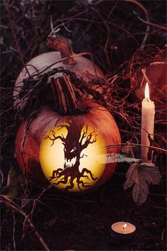 The Ultimate Guide To Carving A Pumpkin Halloween Pictures, Scary Halloween, Halloween Pumpkins, Halloween Crafts, Halloween Decorations, Halloween Stuff, Halloween Ideas, Halloween Stencils, Fall Pumpkins