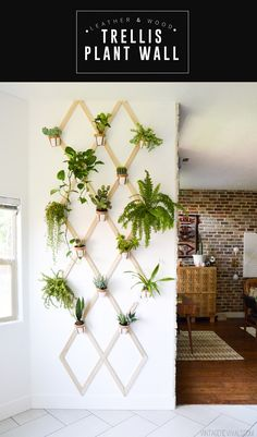 DIY Wood and Leather Trellis Plant Wall- pothos would look cool and doesn't need a lot of light