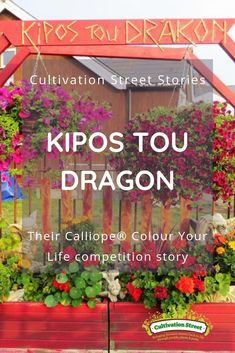 Cultivation Street Story Kipos Tou Dragon, their Calliope® Colour Your Life Story Garden Projects, Garden Ideas, Hanging Baskets, Geraniums, Planters, Dragon, Community, Colour, Street
