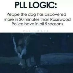What even happened to him after that? Pll Quotes, Pll Memes, Funny Memes, Preety Little Liars, Pretty Little Liars Quotes, Pll Logic, A Pll, I'm Still Here, Percy Jackson
