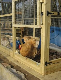 Construction Details for our new Chicekn Run Walk In Chicken Run, Building A Chicken Run, Chicken Coop Run, Diy Chicken Coop Plans, Chicken Pen, Chicken Coup, Chicken Coop Designs, Chicken Ladder, Chicken Enclosure