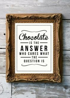 Chocolate is the answer nobody gives a damn what the question is