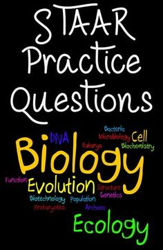These STAAR Biology practice questions a. These STAAR Biology practice questions are a great way to get your high school students ready and prepared for the STAAR Biology exam. Biology Review, Biology Test, High School Biology, Biology Lessons, Science Biology, Middle School Science, Science Lessons, Science Education, Life Science