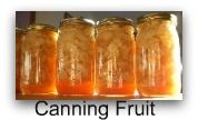 Great website with how-to's for: Canning Equioment; Canning Safety; Canning Vegetables; Jams and Jellys; Canning Tomatoes; Canning Meat; Dehydrating; Freezing Food; Home Food Storage; Vegetable Garden; Pickling; Whole Wheat Recipes; Simple Recipes.