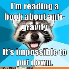 Image result for book meme