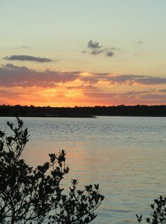A pic I took of the sunset while at a park in Palm Coast, FL & the inter-coastal waterway.