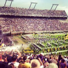 Best place in the world. Ecu Pirates, East Carolina University, University Dorms, Pirate Life, Alma Mater, I School, College Life, Becca, Football