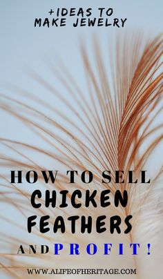 Chicken feathers usually abound in the chicken coop and yard and wouldn't it be wonderful to be able to DO something with them and even bring in a little extra cash each week? Find out how to clean the feathers properly and then what you could make with those feathers to sell! via @delciplouffe