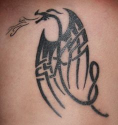 Car+Decals+Graphics+Designs+celtib+knot+dragons | celtic dragon tattoos