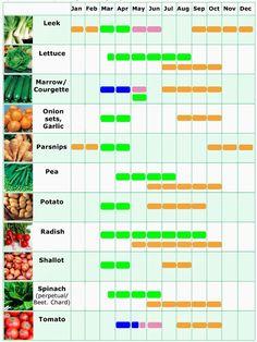 #Vegetable planner