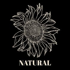 Body Types, Natural, Makeup, Inspiration, Make Up, Biblical Inspiration, Body Shapes, Beauty Makeup, Nature
