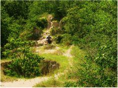 Baton Rouge -- Hooper Road Park Trail -- for mountain biking or hiking