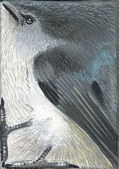 """Gray Warbler 3.5""""x2.5"""" Acrylic on canvas"""