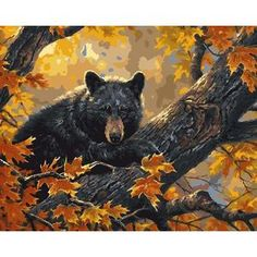WEEN Autumn Bear Diy Painting By Numbers Forest Animal Oil Painting On Canvas Cuadros Decoracion Acrylic Wall Art Home Decor New Diamond Picture, Paint By Number Kits, Bear Art, Creative Activities, Paint Set, To Color, Diy Frame, Easy Paintings, Black Bear