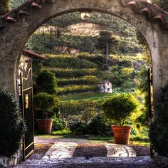 Garden in Provence, France The Places Youll Go, Places To Go, Belle France, Portal, In Vino Veritas, Garden Gates, Dream Garden, Arches, Beautiful Gardens