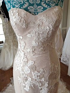 Gorgeous lace overlay over blush watercolor - Casablanca 2142