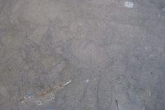 Piedra Caliza Piedra de Burgos